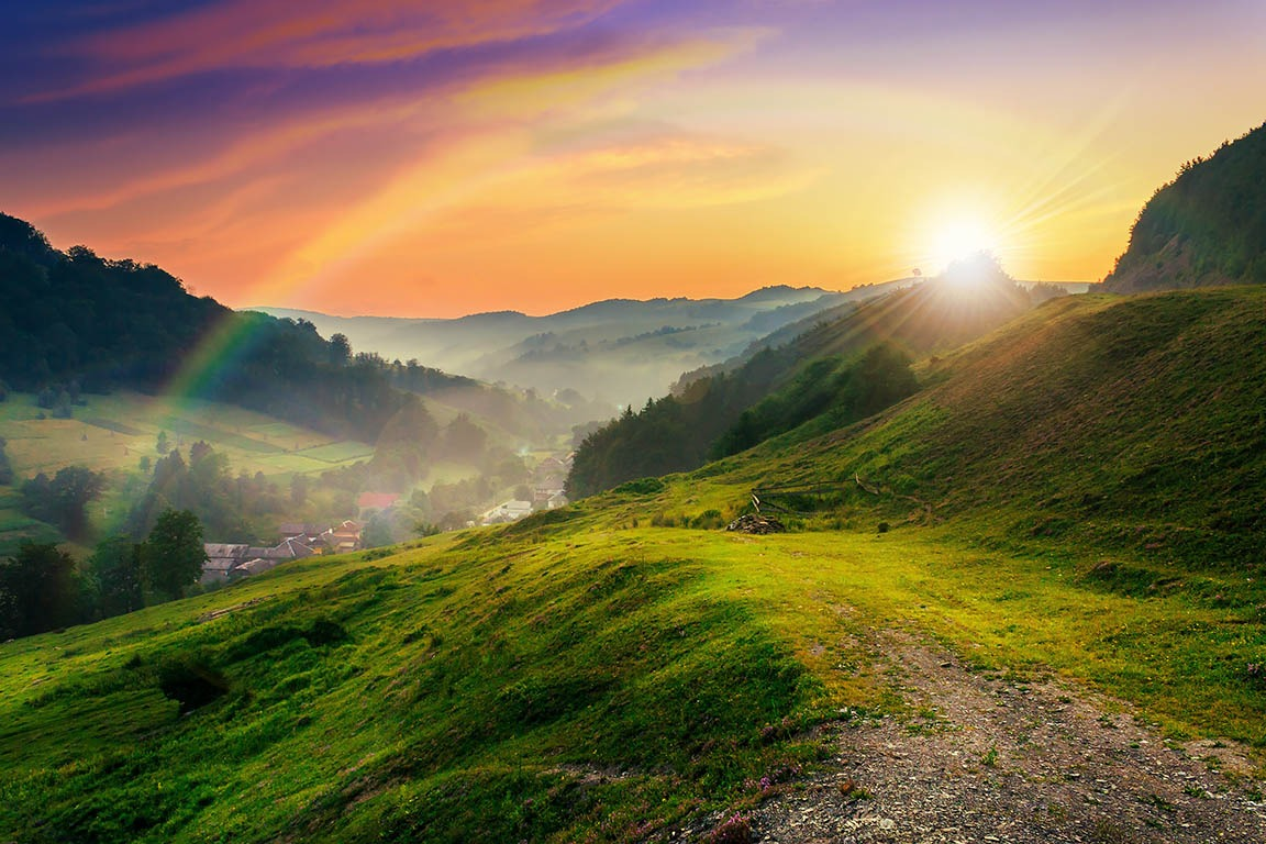 Canvas Prints - Hillside Morning Mist